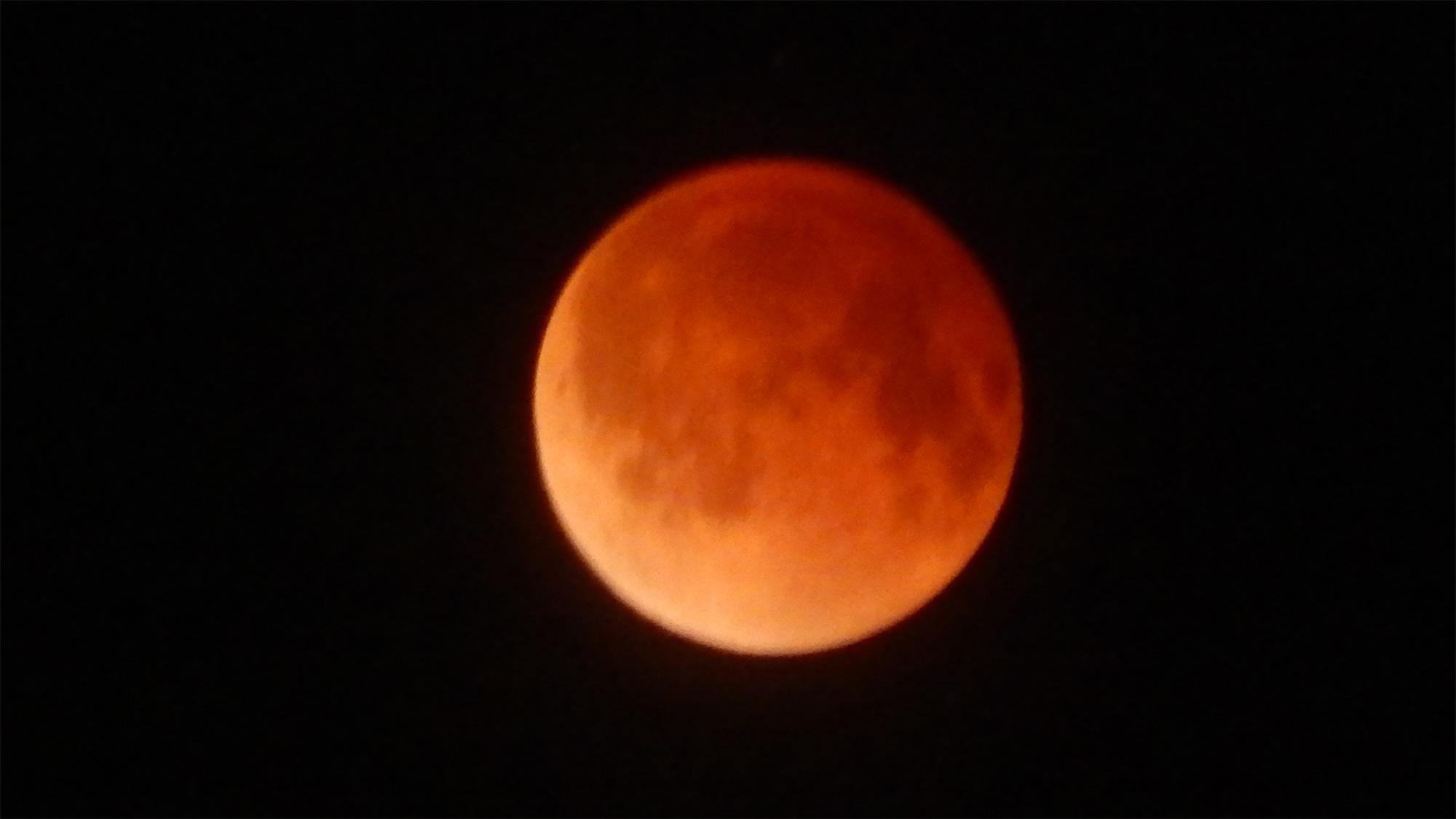 Lunar Eclipse 'Blood Moon' April 15, 2014 from Sun City Center